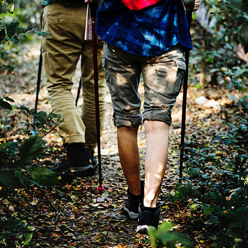 nordic walking berg en dal